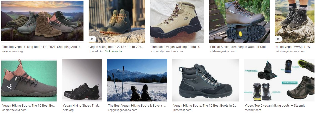 Best Vegan Hiking Boots and Shoes Reviews