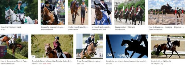 Equestrianism Definition Meaning Pronunciation  and Olympics
