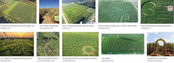 Edmonton corn maze-haunted corn maze near me-buford corn maze